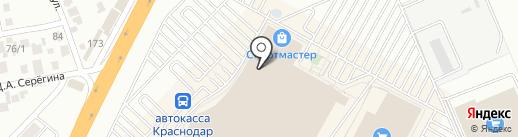 Зеленый попугай на карте Краснодара