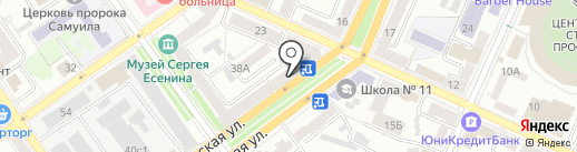 Рыжий синий кот на карте Воронежа