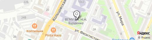 ШАУРМА Дамаскино на карте Воронежа