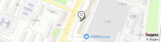 Мастак на карте Воронежа