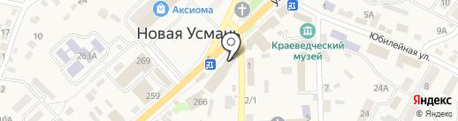 Забота на карте Новой Усмани