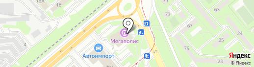 Золотой гусь на карте Липецка