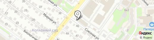 OLGA BELINSKAYA на карте Липецка