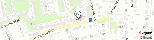 Белый крокус на карте Липецка