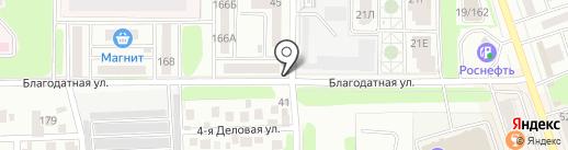 Рыжий кот на карте Ростова-на-Дону