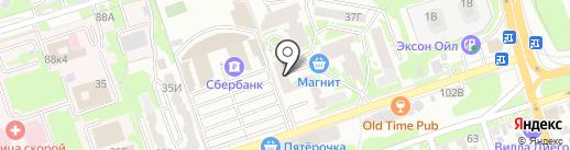 Медведь на карте Ростова-на-Дону