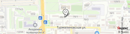 Нефритовая черепаха на карте Ростова-на-Дону