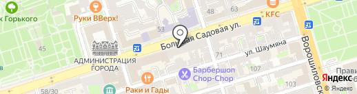Энштейн на карте Ростова-на-Дону