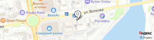 Камелия на карте Ростова-на-Дону
