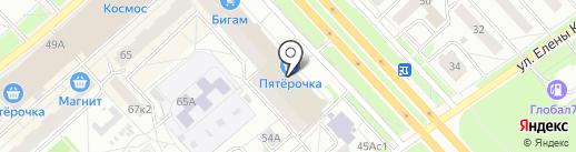 Бобер на карте Ярославля