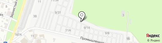 Albero на карте Янтарного