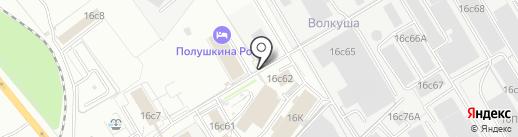 Политекса на карте Ярославля
