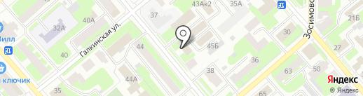 Елена Ролич на карте Вологды