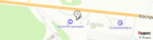 Золотая орхидея на карте Ярославля