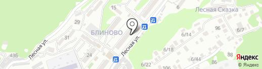 Огонёк на карте Сочи