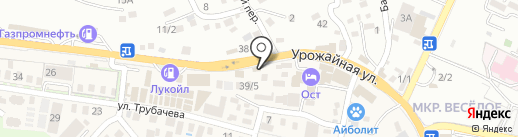 Крылья на карте Сочи