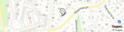 Мир растений на карте Владимира