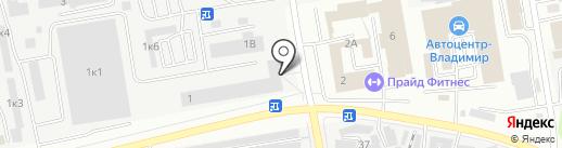 Дерево на карте Владимира