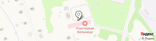 Заостровская участковая больница на карте Большого Анисимово