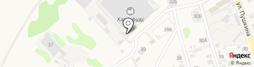 Хаме фудс, ЗАО на карте Боголюбово