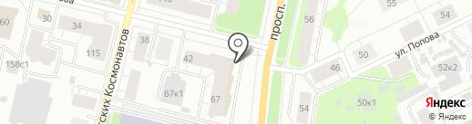 Филин на карте Архангельска