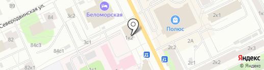 Чёрный кот на карте Архангельска