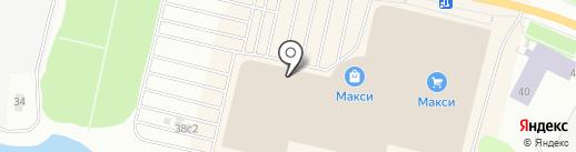 Оранжевый слон на карте Архангельска