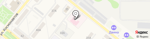 Новодвинская городская станция по борьбе с болезнями животных на карте Новодвинска