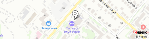 Синий кот на карте Костромы