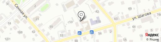 Панда на карте Костромы