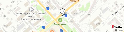 Бегемот на карте Костромы