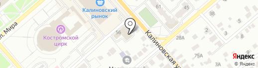 Экономыч на карте Костромы