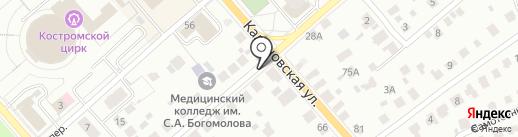 Анира на карте Костромы