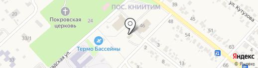 Ёлки на карте Новокубанска