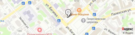 Бизон на карте Иваново