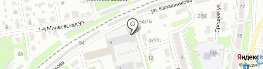 Дельфин на карте Иваново