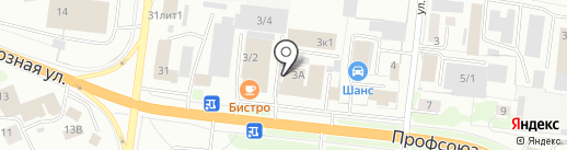 ДИКИЙ КОТ на карте Костромы