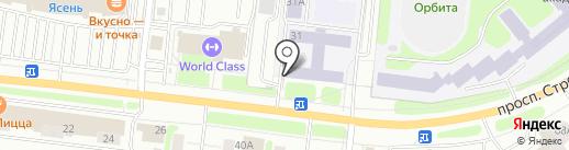 Чайка на карте Иваново