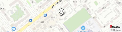 Чиполлино на карте Тамбова