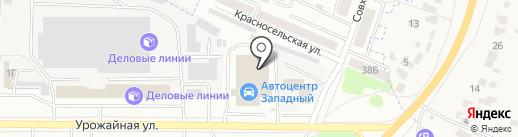 Автомобильность на карте Тамбова