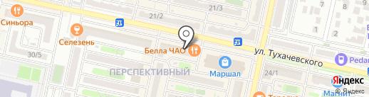 Lady XL на карте Ставрополя