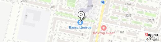 Капитошка на карте Ставрополя
