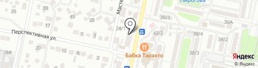 Белый кот на карте Ставрополя