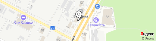 Concept на карте Ставрополя