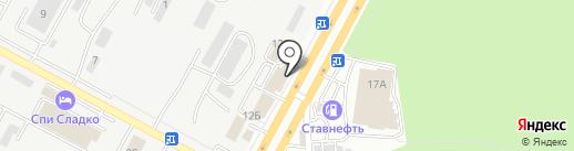 Долголетие на карте Ставрополя