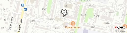 Зебра на карте Ставрополя