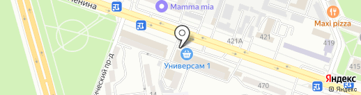 Три кота на карте Ставрополя