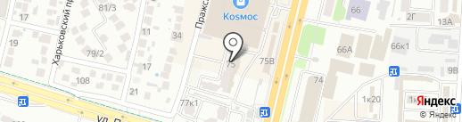 Огого Обстановочка на карте Ставрополя