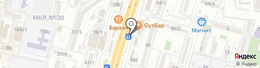 Аленький цветочек на карте Ставрополя