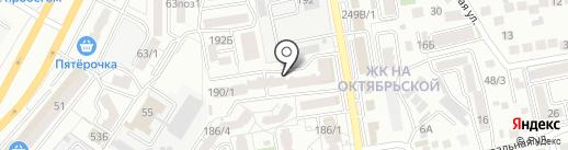Кактус на карте Ставрополя